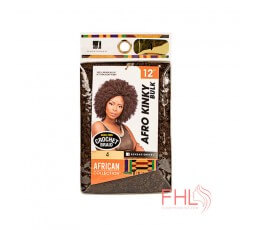 Sensationnel African Collection afro Kinky Twist 12